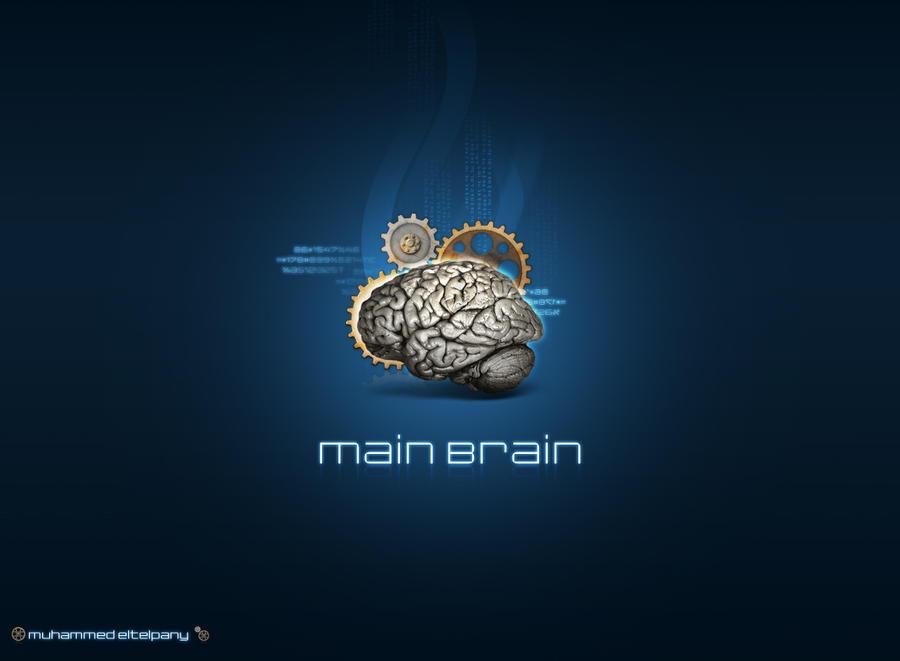 Main Brain by Telpo