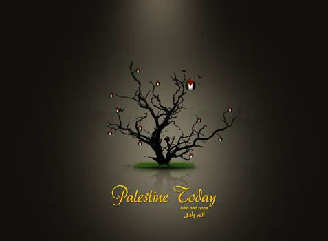 Palestine today v.2