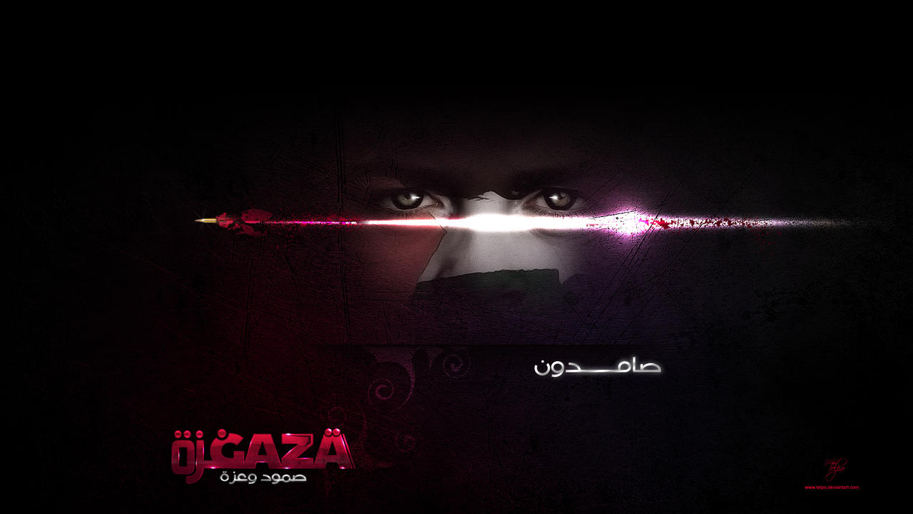 Gaza Package 02 by Telpo