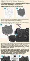 Photoshop Fur tutorial by WarpedOrbit