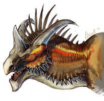 Dragon Portrait 2 ReDo