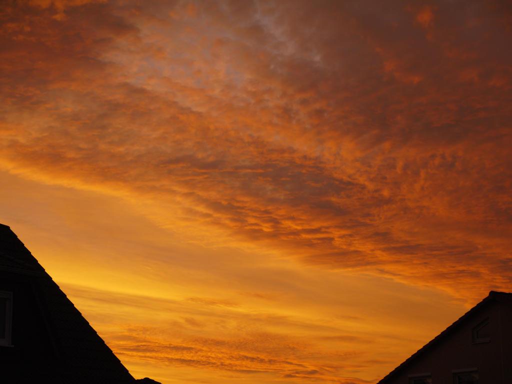 Sunrise II by RavienneArt