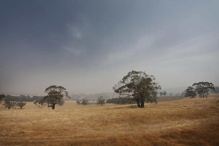 Smoke Haze, Bushfire. by lawrencew