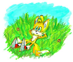 Tails Relaxing in d grass in summer by TheTinfoilRat
