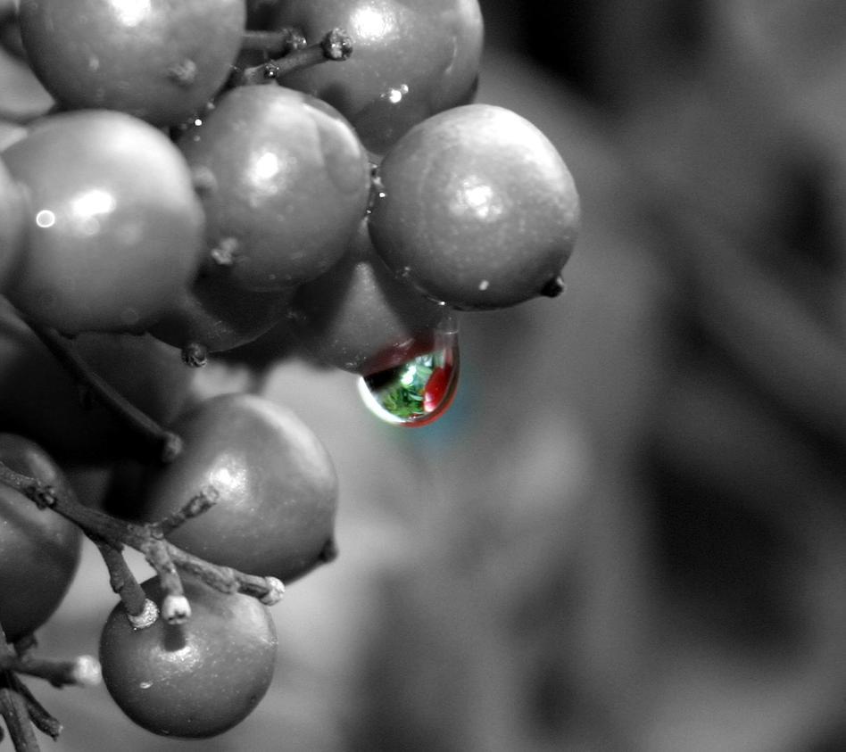 Little Drop of Color by TTFNJinx