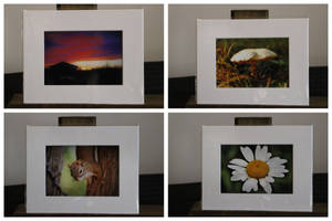 My Photographs are Available on Etsy! by Kristis-Photography