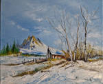 Mountain winter house