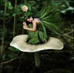 Little Fairy