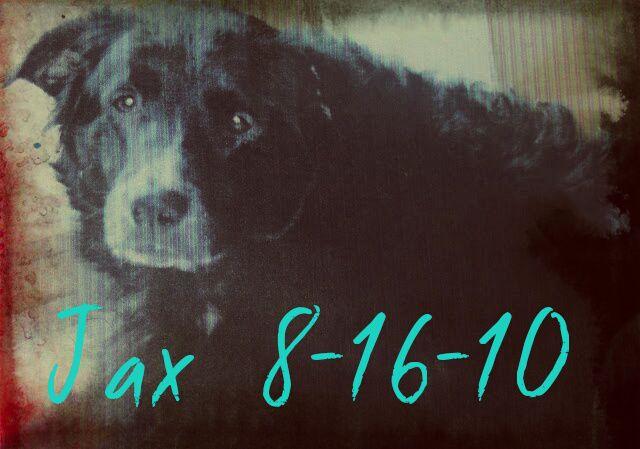 Jax 8-16-10 by Kilala20000