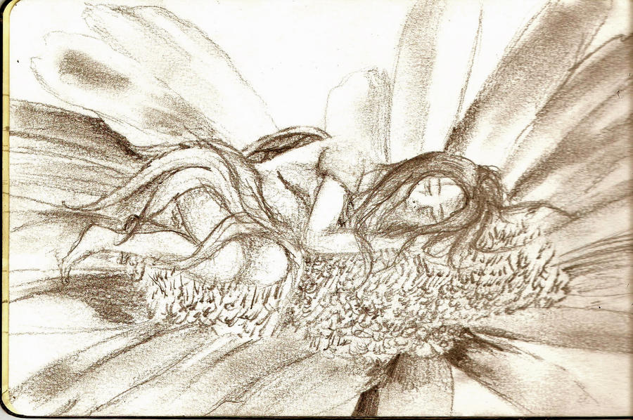 Traditional Flower Line Drawing : Sleeping girl on flower 11.14.11 by starblue522 deviantart