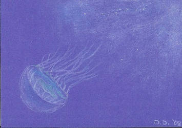 Jellyfish ACEO by skullmage550