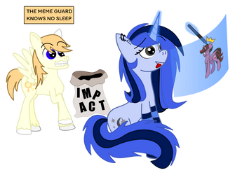 The Meme Guard is always watching by TheCatkitty