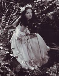 Lost Princess by Ravven-Stock