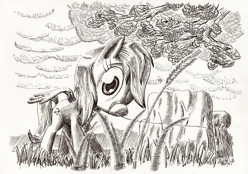 An Encounter by McStalins