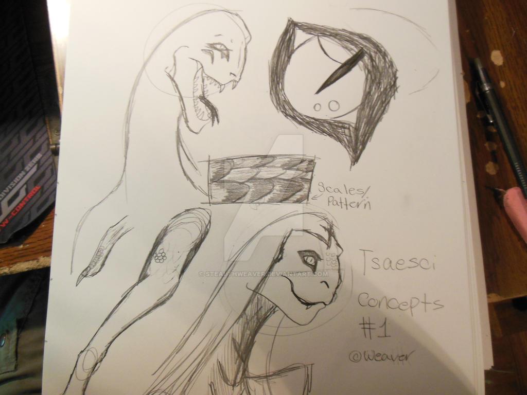 Skyrim Tsaesci concept #1 by Stealthweaver