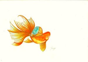 goldfish holding gemstone