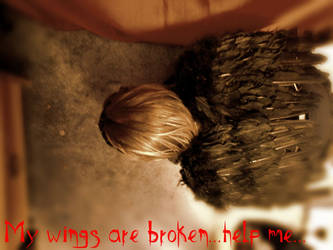 Broken wings by Wildchildforever