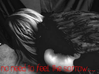 no need to feel the sorrow by Wildchildforever
