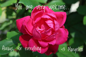 You are very welcome Always For Everything by MEP4Photography