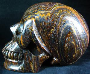 Tiger Iron Skull 001e by SKULLKRAFT