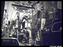 Japanese chaos trance teory