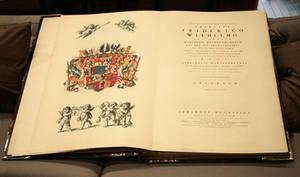 Huge book, open book