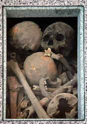 Box of Skulls and Bones