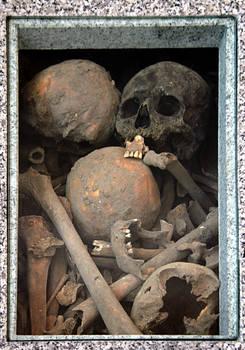 Box of Skulls and Bones