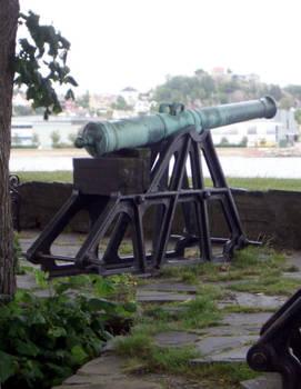 Cannon 01
