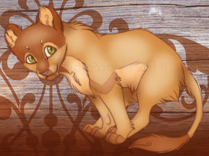 Little Cub Zolta