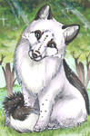 Curious Fox - Trade by PoonieFox