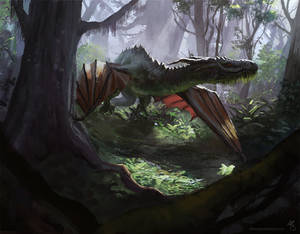Dragon in the Wild