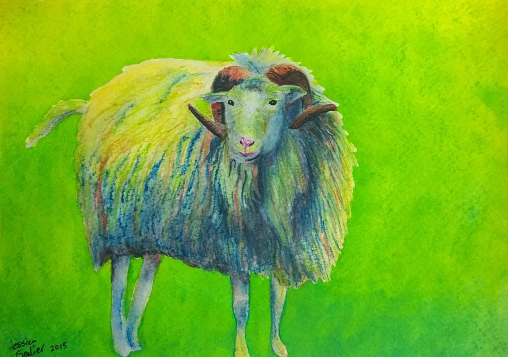 Sheep by JessicaSoulier