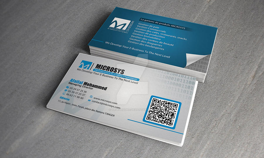 Microsys software company logo and business card by truedesigne on microsys software company logo and business card by truedesigne colourmoves