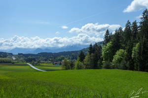 Landscape in spring by Mioko001