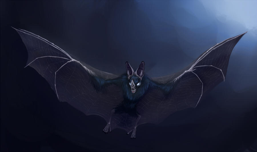 The Vampire Bat by Porrie on DeviantArt