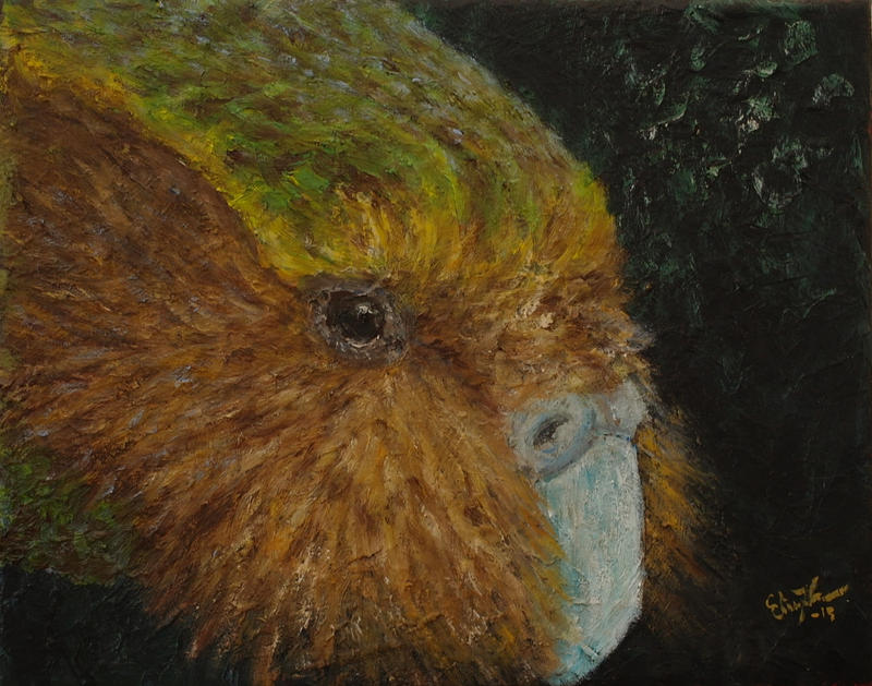 Kakapo (Strigops habroptila) by InnocentMaiden on DeviantArt