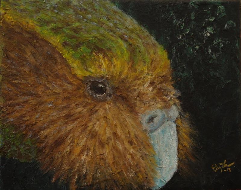 Kakapo (Strigops habroptila) by InnocentMaiden on DeviantArt