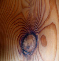 Wood You by MyJSelf