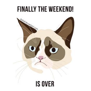 Grumpy cat meme - weekend by 8xhx8