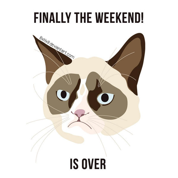 grumpy_cat_meme___weekend_by_8xhx8 d5yuclz grumpy cat meme weekend by 8xhx8 on deviantart