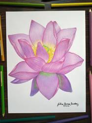 Lotus Flower by JuliusRamosBantog