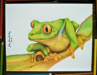 Frog by JuliusRamosBantog