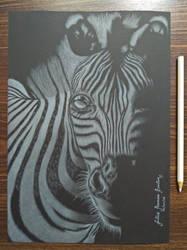 Zebra by JuliusRamosBantog