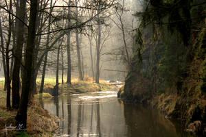 My Secret Forest by pelleron