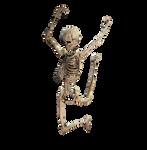 Skeleton 04