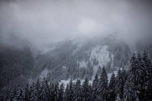 Empty Spaces of Alps