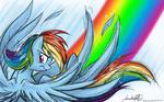 Rainbow Dash Birthday Present