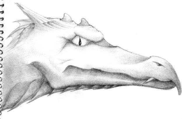dragon-head-001 by bardicstorm