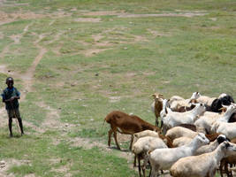 Maasai 10 by v-collins